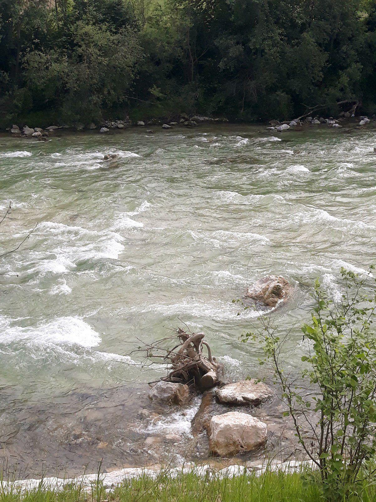 Reka Življenja